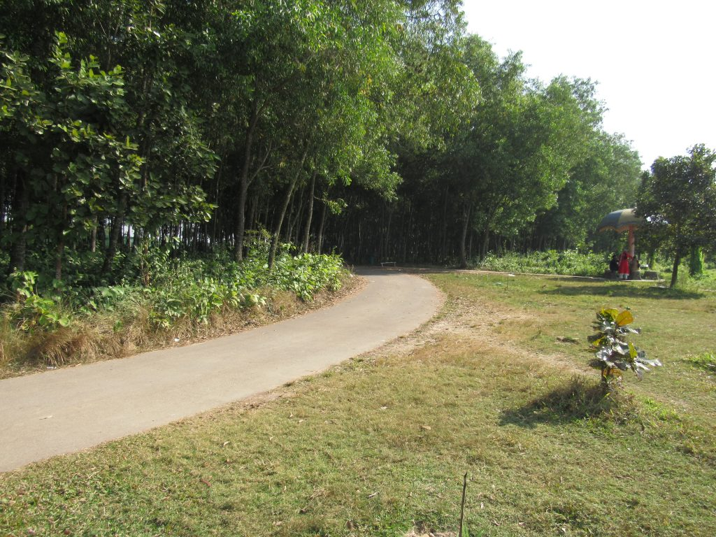 A Road inside